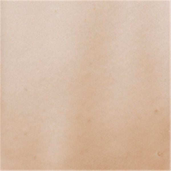Debitus - Grisailles - Brun Clair - N°2 - 100g