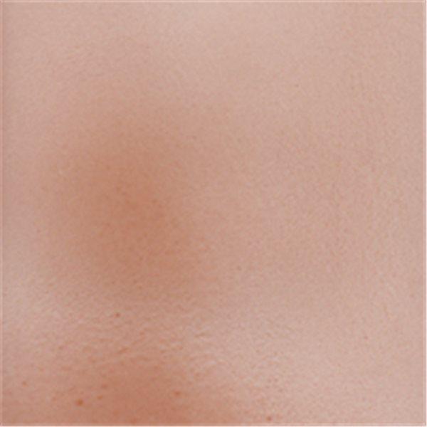Debitus - Grisailles - Sanguine - 100g